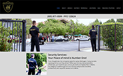 Taurus Protection Inc. Website Link